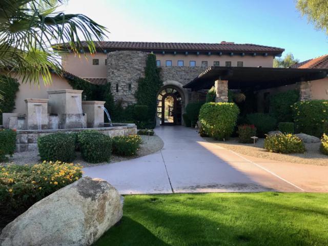 20660 N 40TH Street #1001, Phoenix, AZ 85050 (MLS #5820274) :: Brett Tanner Home Selling Team
