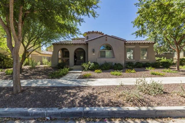 20457 W Springfield Street, Buckeye, AZ 85396 (MLS #5820308) :: The Garcia Group @ My Home Group