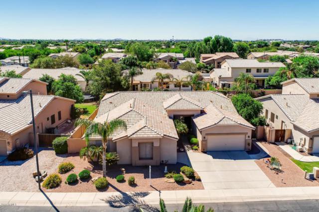 2185 W Longhorn Drive, Chandler, AZ 85286 (MLS #5820311) :: The Garcia Group