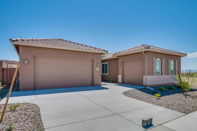 10443 W Nosean Road, Peoria, AZ 85383 (MLS #5820331) :: Sibbach Team - Realty One Group