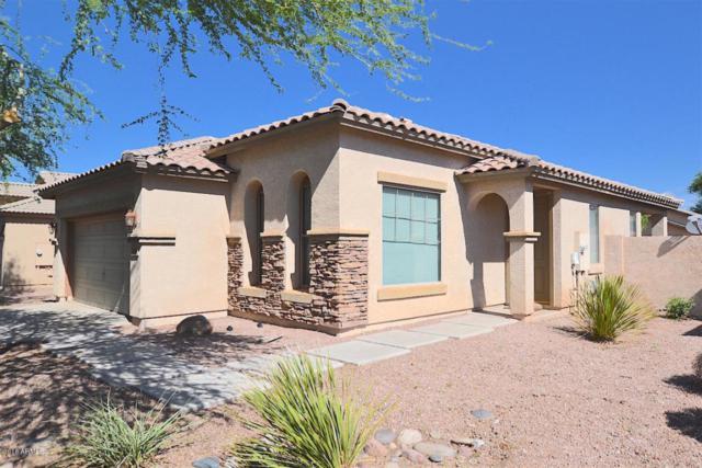 3358 E Packard Drive, Gilbert, AZ 85298 (MLS #5820332) :: The Jesse Herfel Real Estate Group