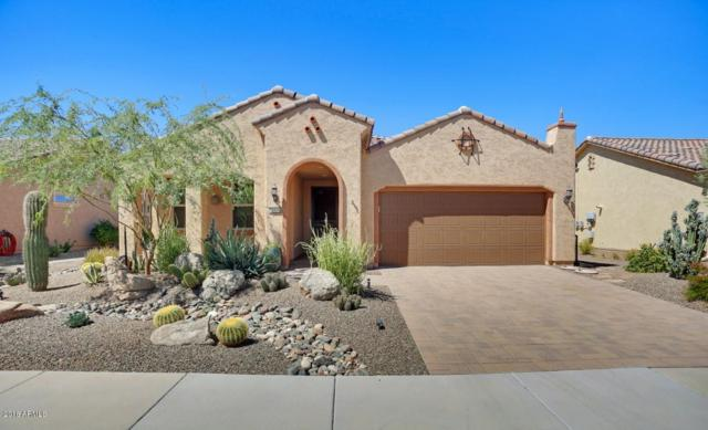 21834 N 262ND Lane, Buckeye, AZ 85396 (MLS #5820476) :: The W Group