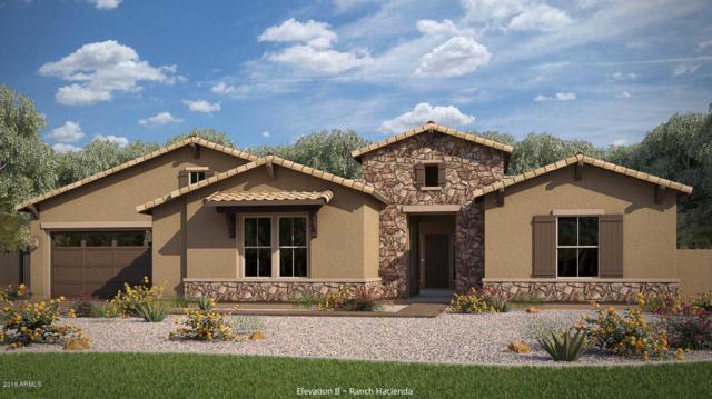 1952 E Indian Wells Drive, Gilbert, AZ 85298 (MLS #5820481) :: Team Wilson Real Estate