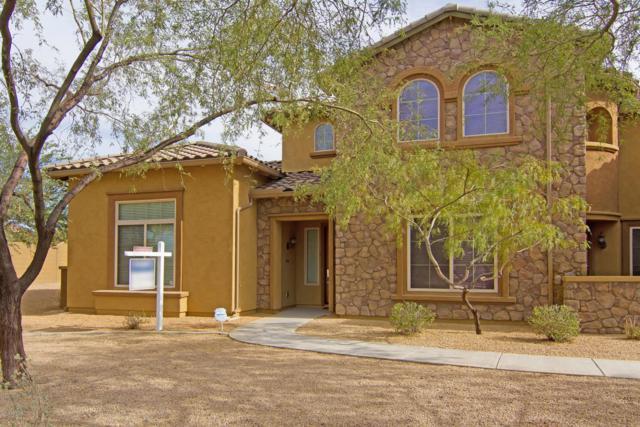 3866 E Cat Balue Drive, Phoenix, AZ 85050 (MLS #5820487) :: RE/MAX Excalibur