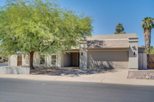 624 S Kenwood Lane, Chandler, AZ 85226 (MLS #5820492) :: Occasio Realty