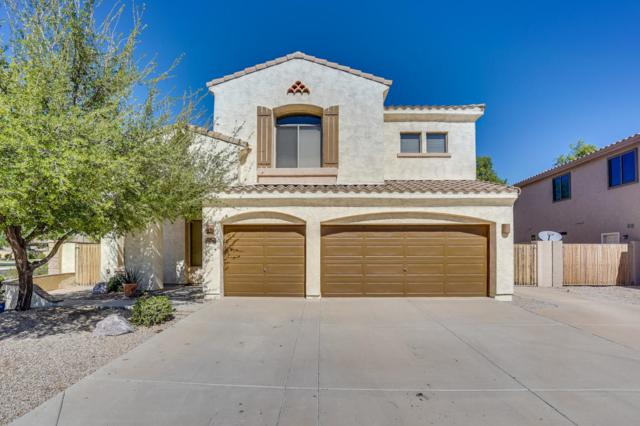 814 E Aquarius Place, Chandler, AZ 85249 (MLS #5820522) :: Keller Williams Realty Phoenix