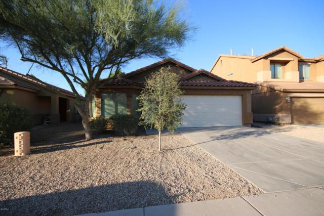 2978 W Jasper Butte Drive, Queen Creek, AZ 85142 (MLS #5820664) :: Arizona 1 Real Estate Team
