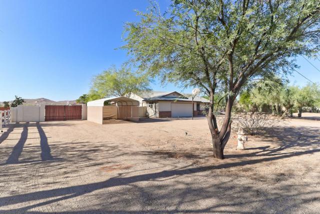733 E Galvin Street, Phoenix, AZ 85086 (MLS #5820697) :: Santizo Realty Group