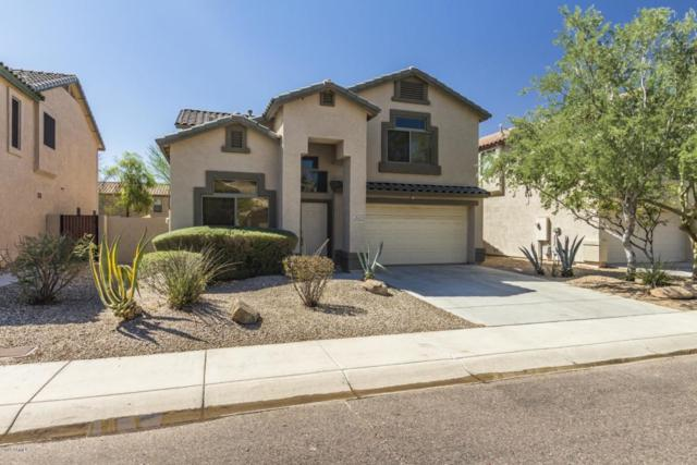 2523 W Bent Tree Drive, Phoenix, AZ 85085 (MLS #5820707) :: Occasio Realty