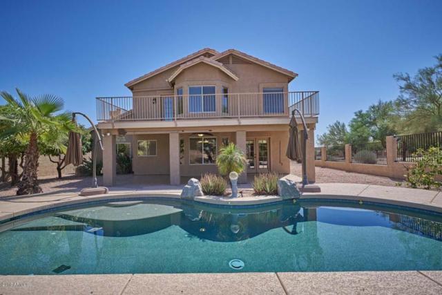 15223 S 29TH Street, Phoenix, AZ 85048 (MLS #5820725) :: Team Wilson Real Estate