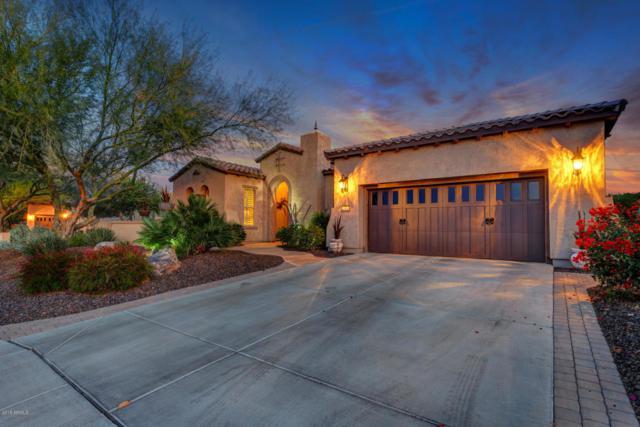 27645 N Makena Place, Peoria, AZ 85383 (MLS #5820790) :: The Laughton Team