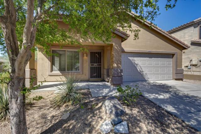 10456 E Raintree Drive, Scottsdale, AZ 85255 (MLS #5820811) :: The Everest Team at My Home Group