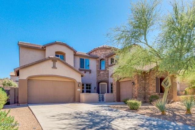 26889 N 87TH Lane, Peoria, AZ 85383 (MLS #5820812) :: The Laughton Team