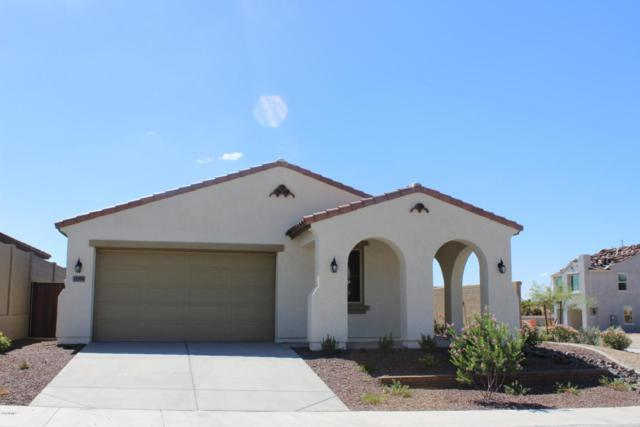 11394 S 175TH Drive, Goodyear, AZ 85338 (MLS #5820907) :: Kortright Group - West USA Realty