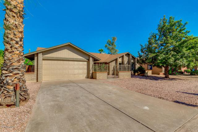 14239 N 45TH Street, Phoenix, AZ 85032 (MLS #5820912) :: Occasio Realty