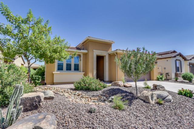 828 E Harmony Way, San Tan Valley, AZ 85140 (MLS #5820932) :: Arizona 1 Real Estate Team