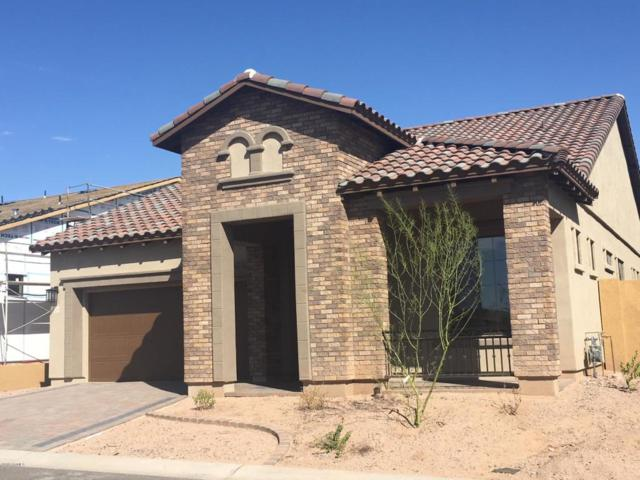 2065 N Red Cliff Circle, Mesa, AZ 85207 (MLS #5820933) :: Riddle Realty