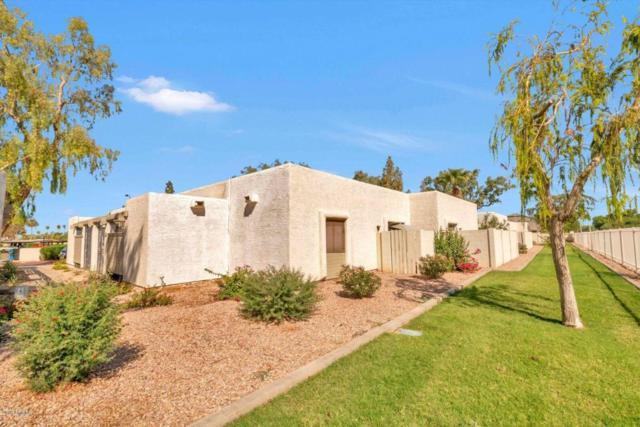 520 S Evergreen Road, Tempe, AZ 85281 (MLS #5820987) :: Arizona 1 Real Estate Team