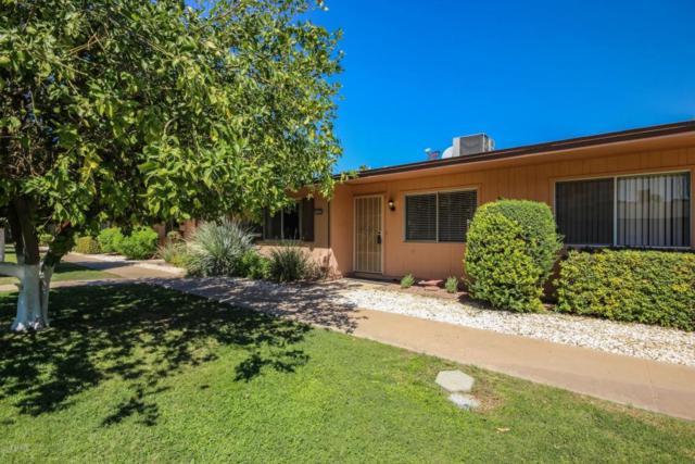 14030 N Newcastle Drive, Sun City, AZ 85351 (MLS #5821037) :: Brett Tanner Home Selling Team