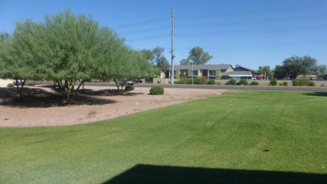 2666 E Silk Oak Drive, Tempe, AZ 85281 (MLS #5821038) :: Arizona 1 Real Estate Team