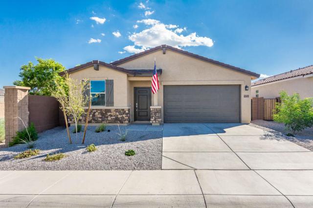 23695 W Whyman Street, Buckeye, AZ 85326 (MLS #5821043) :: Occasio Realty
