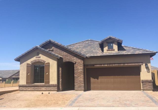 2130 N Dome Rock Circle, Mesa, AZ 85207 (MLS #5821091) :: Occasio Realty