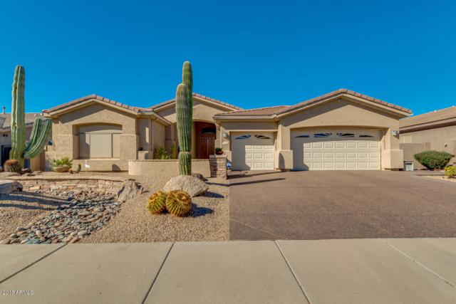 13420 W Coronado Road, Goodyear, AZ 85395 (MLS #5821094) :: Phoenix Property Group