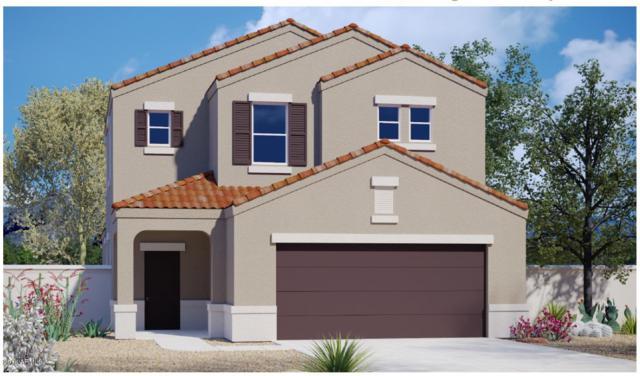 28387 N Moonstone Way, San Tan Valley, AZ 85143 (MLS #5821112) :: Arizona 1 Real Estate Team