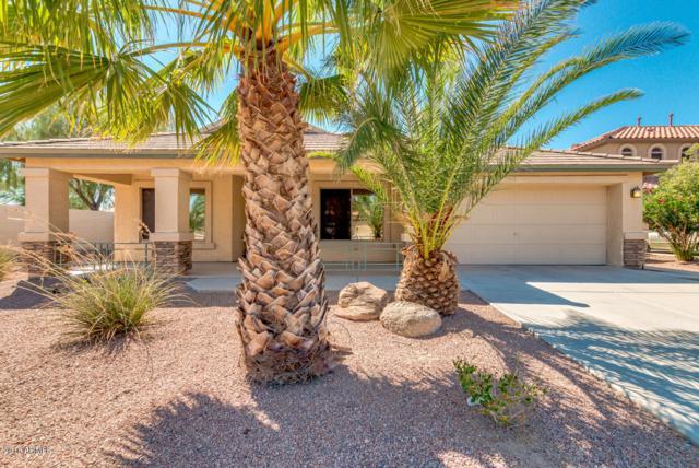 21532 N Backus Drive, Maricopa, AZ 85138 (MLS #5821134) :: Revelation Real Estate