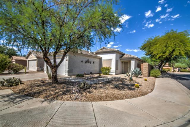 30105 N Sunray Drive, San Tan Valley, AZ 85143 (MLS #5821177) :: Arizona 1 Real Estate Team
