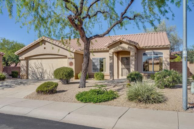 22310 N Cochise Lane, Sun City West, AZ 85375 (MLS #5821183) :: The W Group