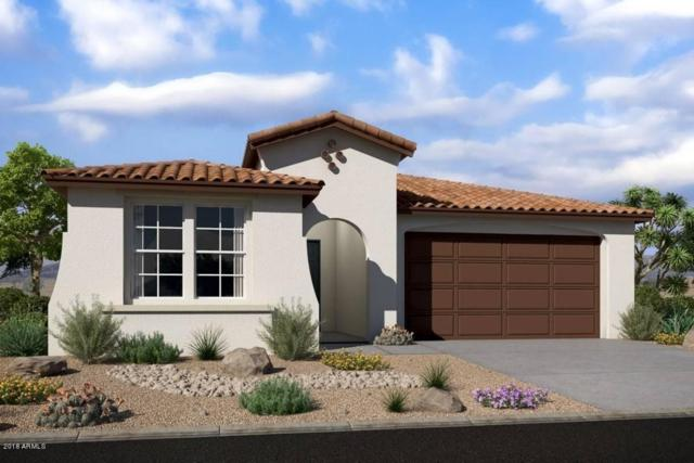 9798 W Foothill Drive, Peoria, AZ 85383 (MLS #5821301) :: Phoenix Property Group