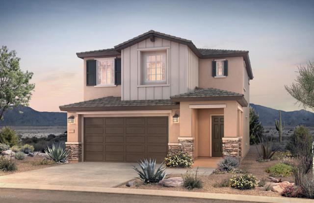 9523 E Thornbush Avenue, Mesa, AZ 85212 (MLS #5821302) :: Gilbert Arizona Realty