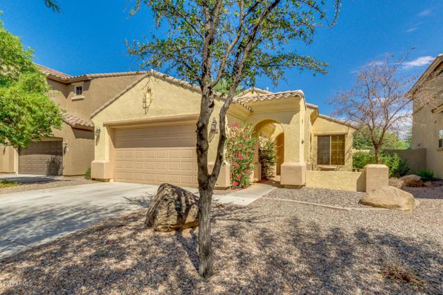 3811 S Vineyard Avenue, Gilbert, AZ 85297 (MLS #5821305) :: Keller Williams Realty Phoenix