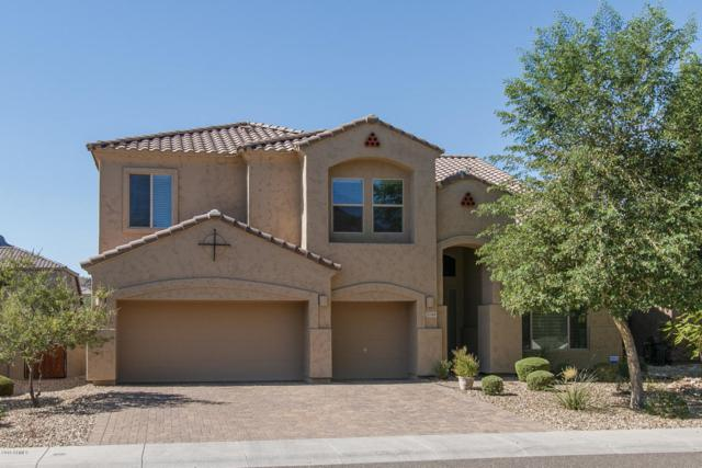 5749 W Plum Road, Phoenix, AZ 85083 (MLS #5821331) :: REMAX Professionals