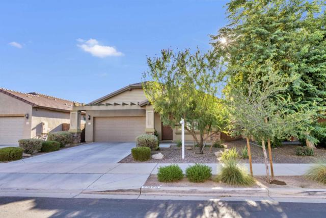 21825 S 214TH Street, Queen Creek, AZ 85142 (MLS #5821402) :: Revelation Real Estate