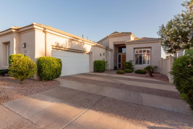 11875 E Terra Drive, Scottsdale, AZ 85259 (MLS #5821417) :: Lux Home Group at  Keller Williams Realty Phoenix