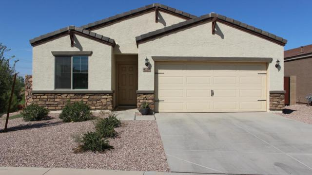 4228 S 82ND Lane, Phoenix, AZ 85043 (MLS #5821428) :: Occasio Realty
