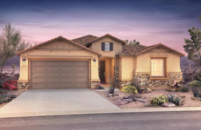 9706 E Thornbush Avenue, Mesa, AZ 85212 (MLS #5821435) :: Gilbert Arizona Realty