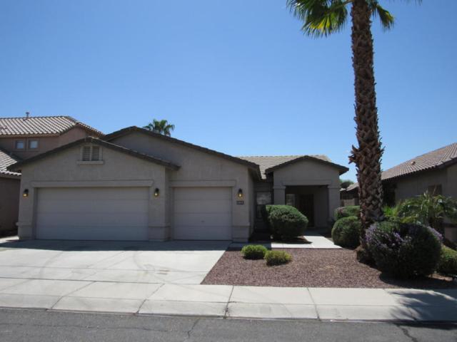 12835 W Fairmount Avenue, Avondale, AZ 85392 (MLS #5821436) :: Santizo Realty Group