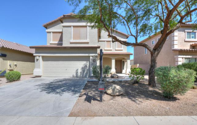 41342 W Capistrano Drive, Maricopa, AZ 85138 (MLS #5821440) :: Revelation Real Estate