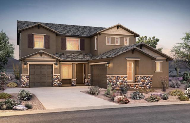 9710 E Thornbush Avenue, Mesa, AZ 85212 (MLS #5821445) :: Gilbert Arizona Realty