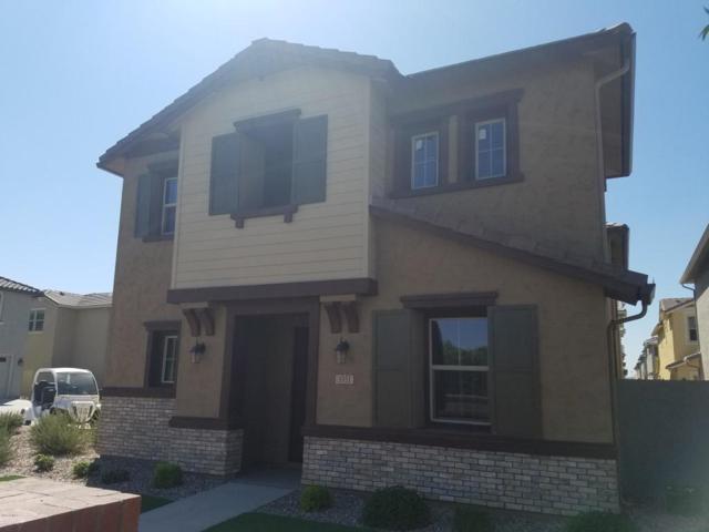3951 E Perkinsville Street, Gilbert, AZ 85295 (MLS #5821446) :: Arizona 1 Real Estate Team
