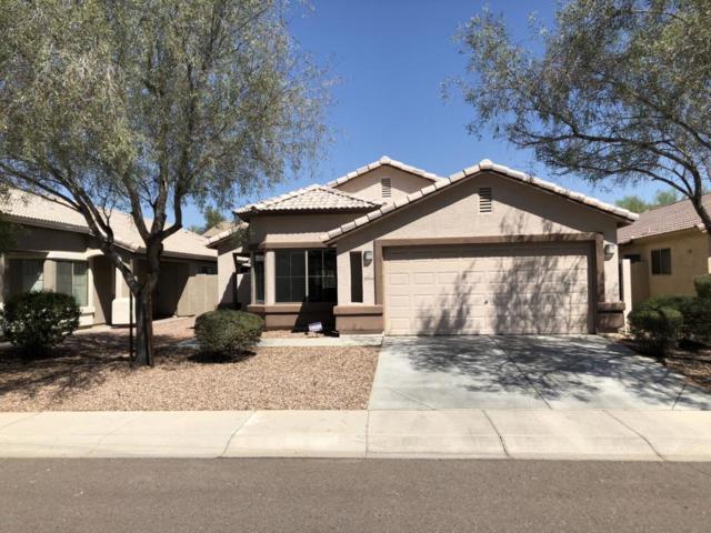 10144 W Veliana Way, Tolleson, AZ 85353 (MLS #5821457) :: Group 46:10