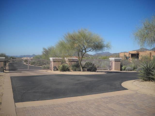 11041 E Rising Sun Drive, Scottsdale, AZ 85262 (MLS #5821458) :: Yost Realty Group at RE/MAX Casa Grande