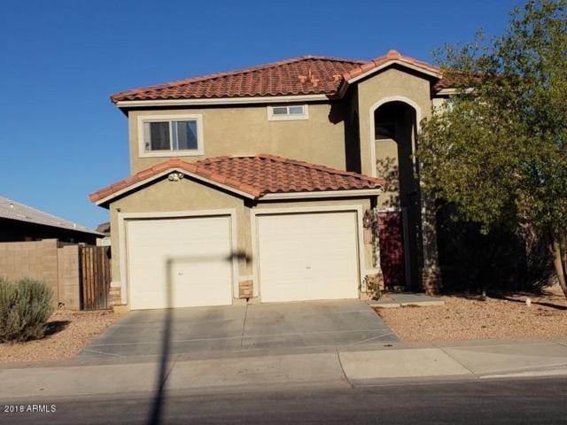 9043 S 253RD Avenue, Buckeye, AZ 85326 (MLS #5821462) :: The Results Group