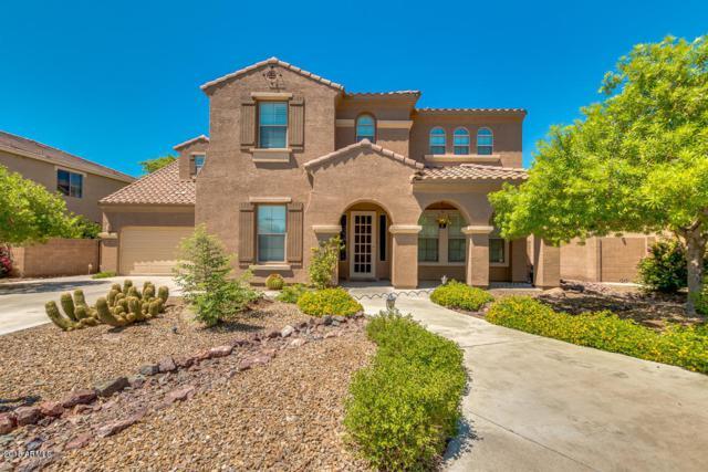 3410 E Lark Drive, Chandler, AZ 85286 (MLS #5821471) :: Arizona 1 Real Estate Team