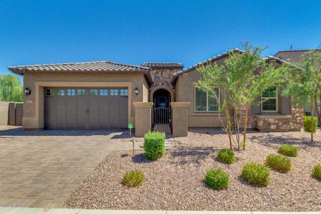 22927 N 45TH Place, Phoenix, AZ 85050 (MLS #5821478) :: Conway Real Estate