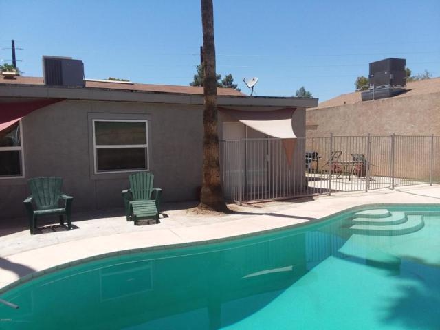 2537 N 87TH Way, Scottsdale, AZ 85257 (MLS #5821480) :: Phoenix Property Group