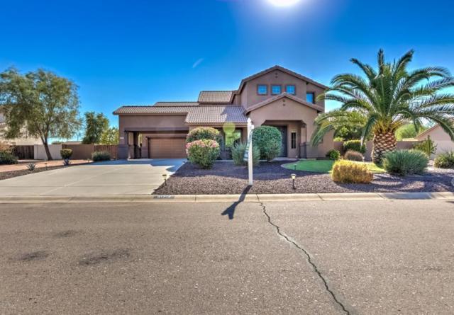 31712 N Shire Court, San Tan Valley, AZ 85143 (MLS #5821493) :: Arizona 1 Real Estate Team